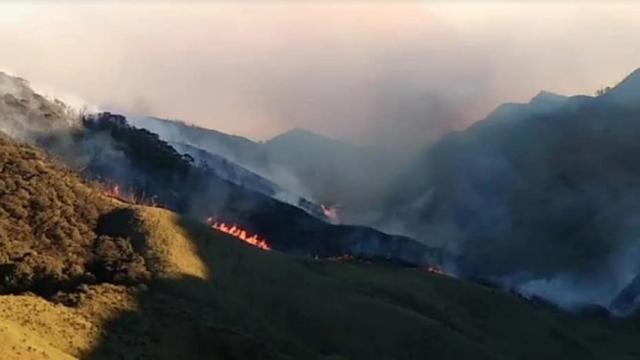 Dzukou Valley fire